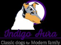 Indigo Aura Logo